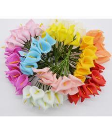 Sada mini květin - kaly
