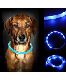 LED obojek pro psy