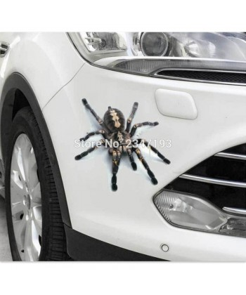 3D samolepka na auto pavouk tarantule pro  VW Polo BMW E46 Ford Focus Lada Granta Toyota Corolla Honda Civic Audi A3 Renault