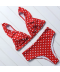 Dvoudílné dámské plavky s volánkem a vysokými kalhotkami