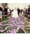 Dekorační svatební okvětní lístky