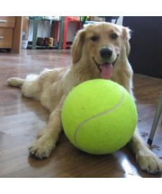 Tenisový míč pro psy