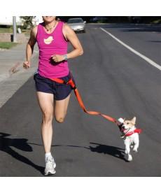 Vodítko pro běh se psem