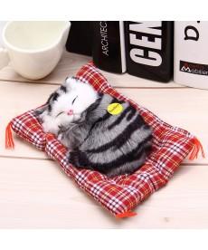 Spící kočka na polštářku v několika barvách